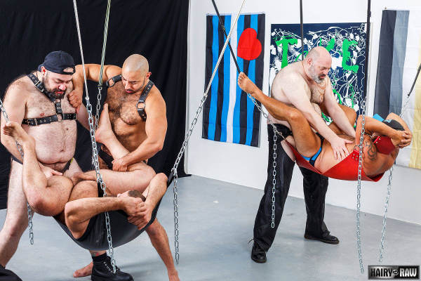 Gay Sex Slings 41