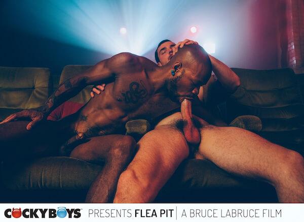 black suce blanc au ciné gay